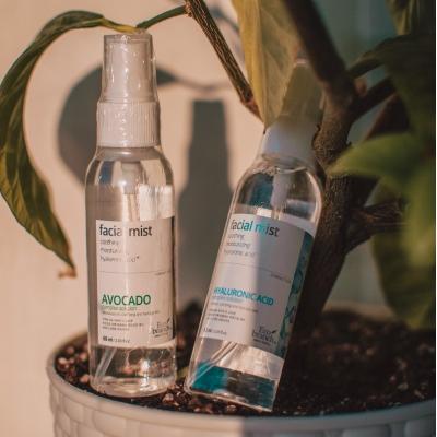 Eco Branch Fasial Mist Hyaluronic Acid Complex Solution Увлажняющий мист для лица с гиалуроновой кислотой